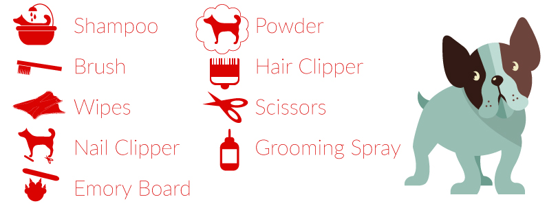 Materials Needed for Dog Grooming