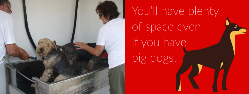 5-space-for-big-dogs