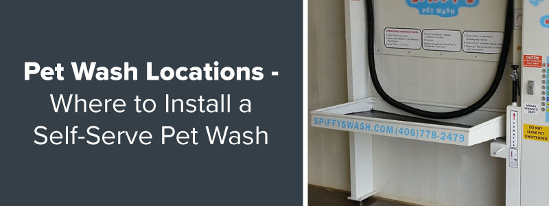 Where to install a self serve pet wash all paws pet wash self serve pet wash location ideas solutioingenieria Choice Image
