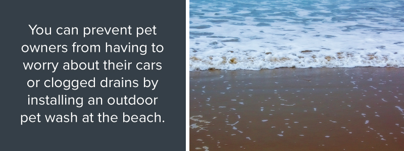 Install pet wash at the beach