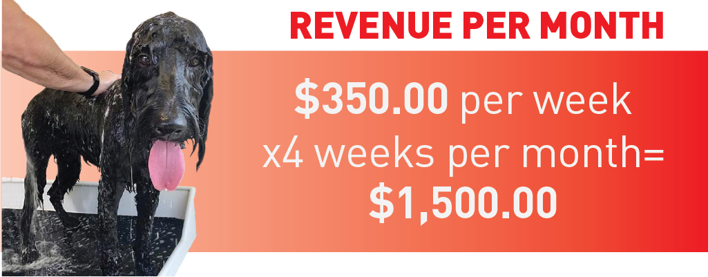 Revenue per Month